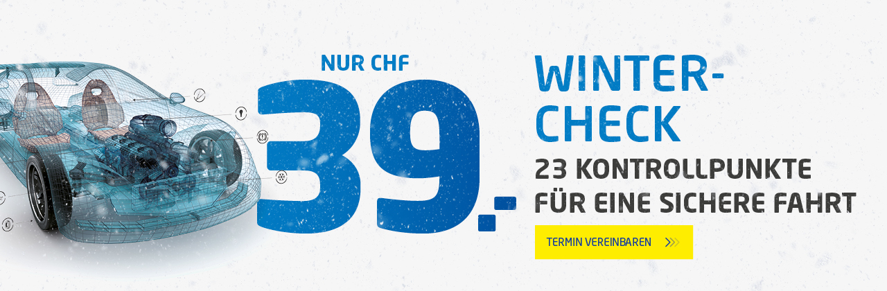 Winter-Check nur CHF 39.-